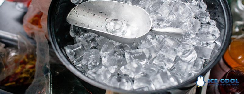 Máy sản xuất đá viên tinh khiết ICE COOL